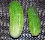 medium_cucumber.jpg