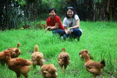 sherene with chickens2Web.JPG