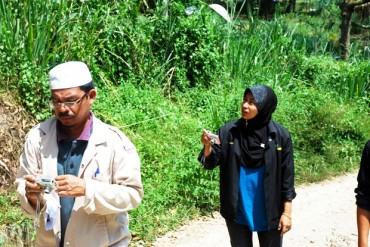organic durians, sijil organik malaysia, certified organic farm in malaysia, s.o.m., food regulations act 1985, certified organic durians,