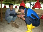 datuk azahar smelling the 7 year old sand litter.JPG
