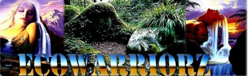 ecowarriorz1-banner.jpg
