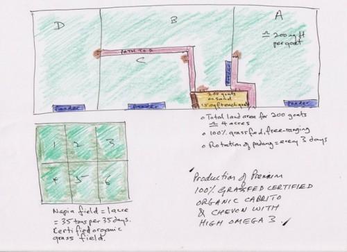 plan for organic cabrito Web.jpg
