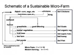 sustainablefarmmodel.jpg