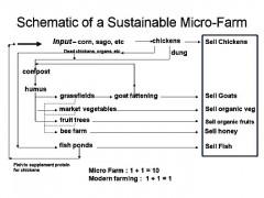 sustainablefarmmodel.jpg