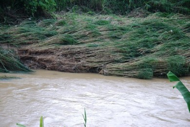 Farmer's bane, floods, river broke its bank, tire staircase,