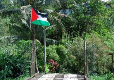 palestine conflict, gaza, palestinian problem,
