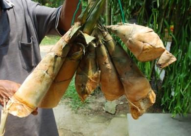 Rebung masak lemak, bamboo shoots, slow food,